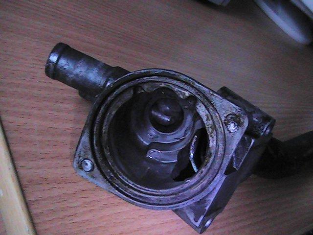PIC_1908.JPG